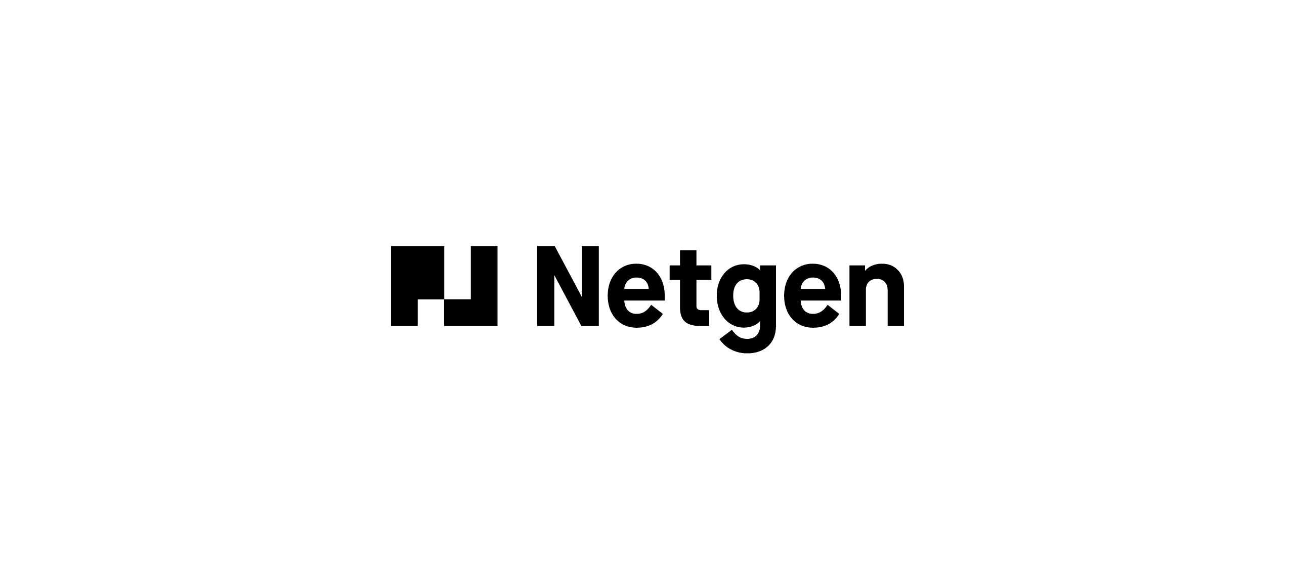 Netgen-Idna-Website